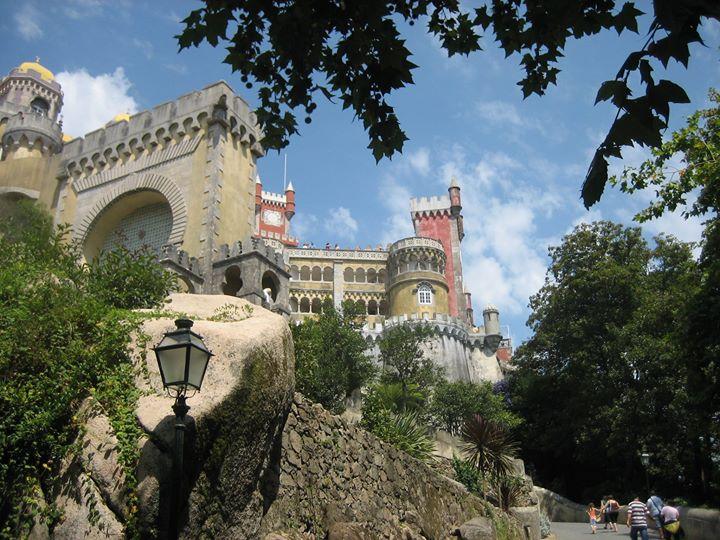 Castillo DaPena 2008